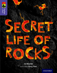 Secret Life of Rocks