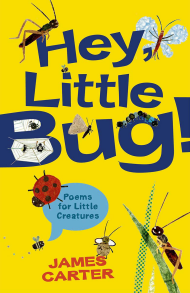 Hey, Little Bug!
