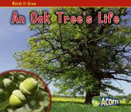 An Oak Tree's Life